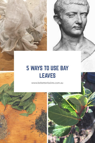 5 ways to use Bay Leaves