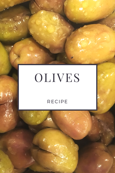 How to prepare freshly picked olives