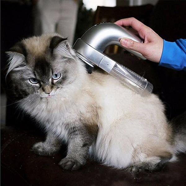 #1 Portable Pet Hair Vacuum