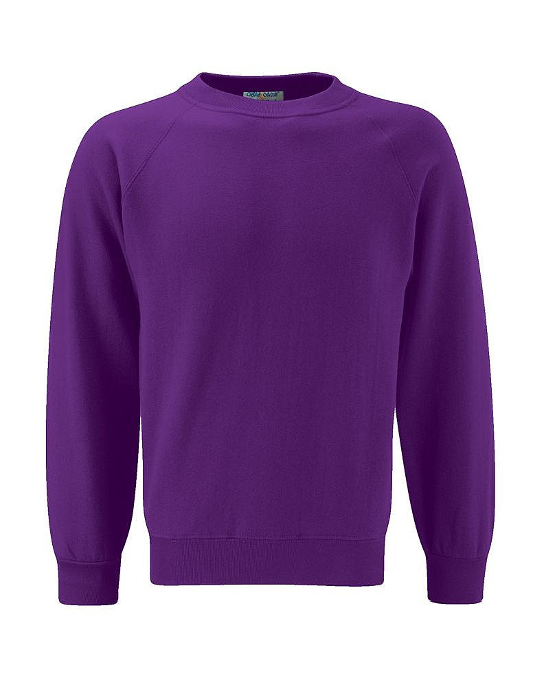 The Hollies School Purple Sweatshirt
