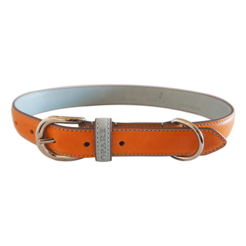 Orange Leather Dog Collar