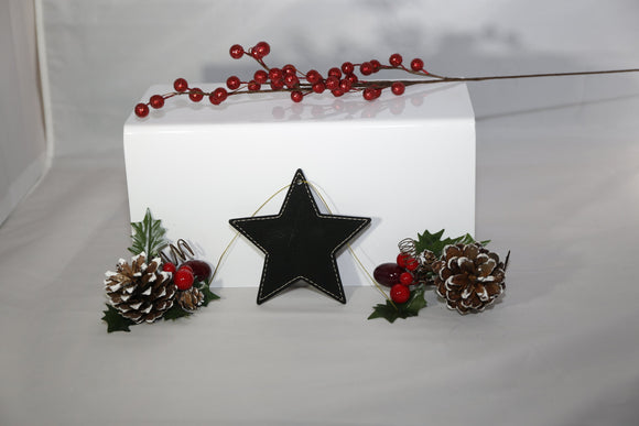 Laserable Leatherette Star Ornament with Gold String - Lucky Dog Custom Creations
