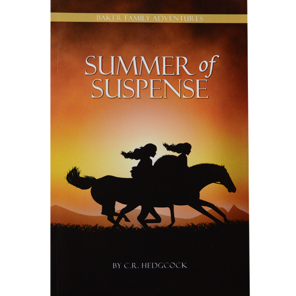 Baker Family Adventures #1 Summer of Suspense