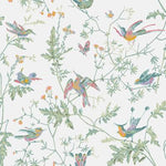 Cole & Son HUMMINGBIRDS PASTEL Wallpaper