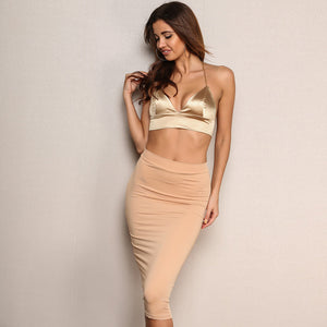 Deep V Neck Spaghetti Strap Backless Halter Crop Top and Skirt Set