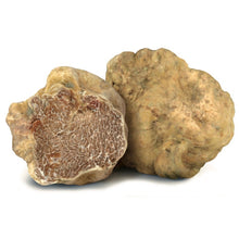 Load image into Gallery viewer, White Truffle and Mushrooms Sauce 3.17 Oz / 90 gr