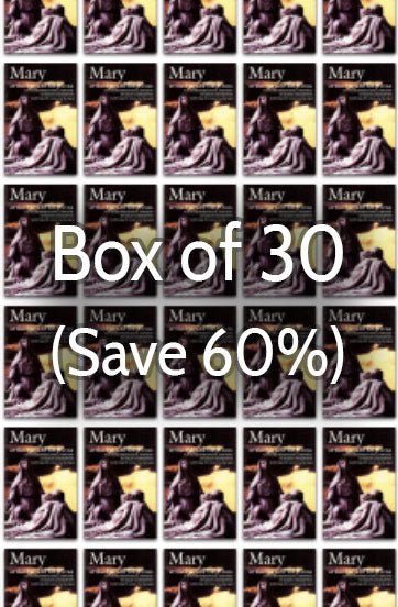 Mary at the Foot of the Cross 1: Millennium with Mary 60% bulk discount