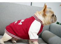 Bomber Jacket Inspired Dog Sweater