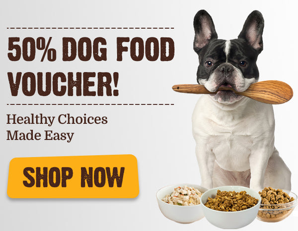 50% Dog Vouchers - G Display Healthy Choices Made Easy