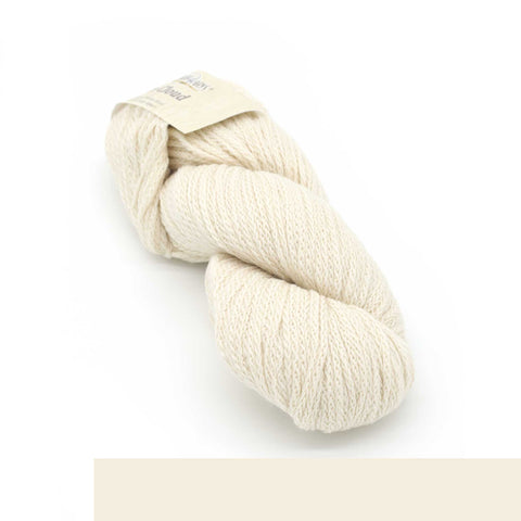 Пряжа Cascade Yarns ECO CLOUD - Цвет 1801 Cream | KatyushaShop.com