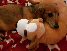 Load image into Gallery viewer, Brown Dog Pillow w/White Paws