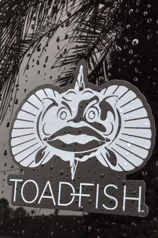 Toadfish Non-Tipping Can Cooler