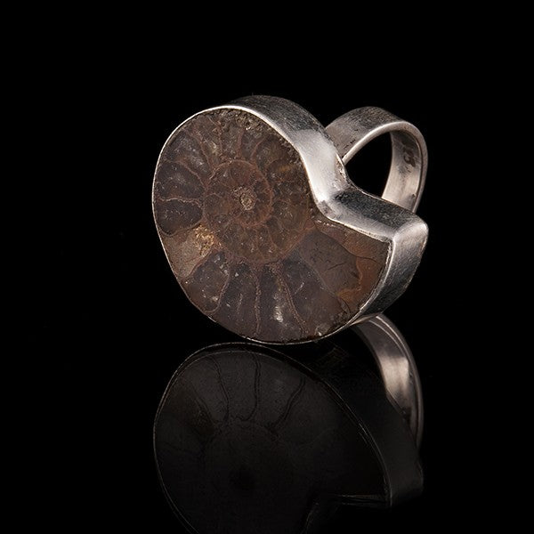 Silver Ring With Ammonite Fossil