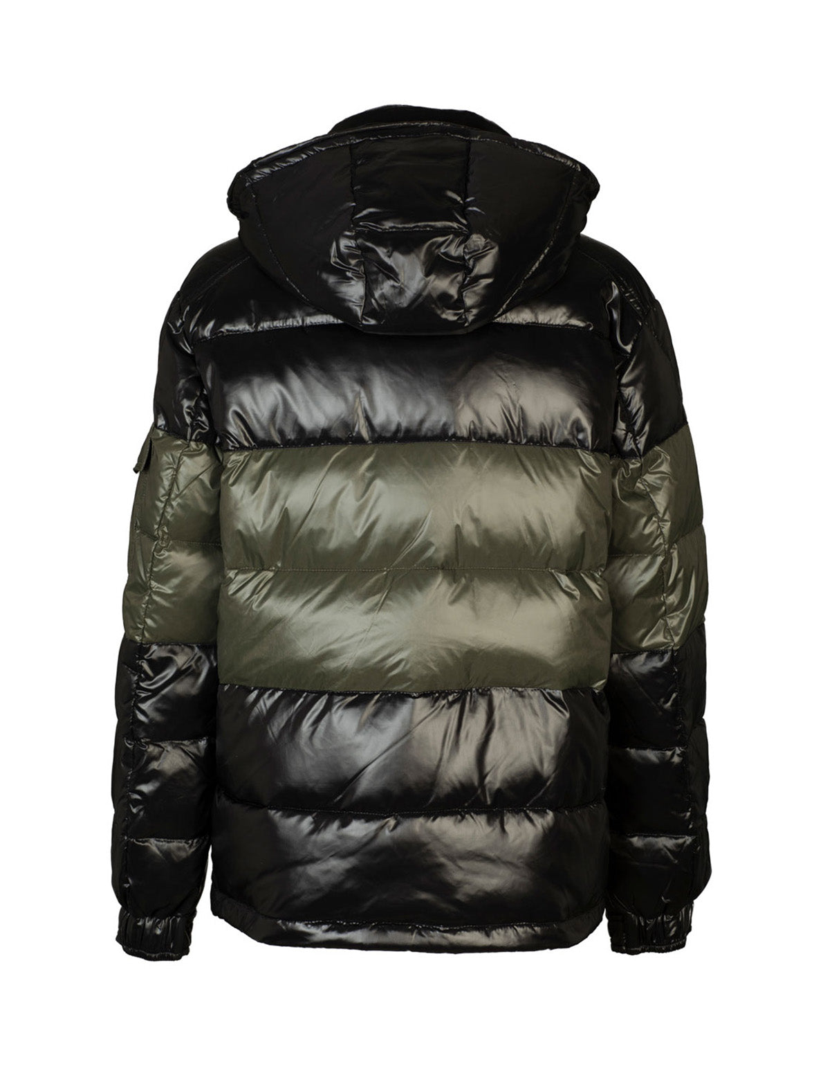 PANELLED PUFFER