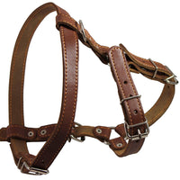 "Genuine Leather Dog Walking Harness Medium Brown, 21"" - 24"" Chest"