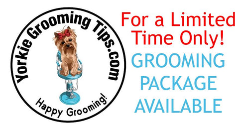 Yorkie Grooming Tips Package