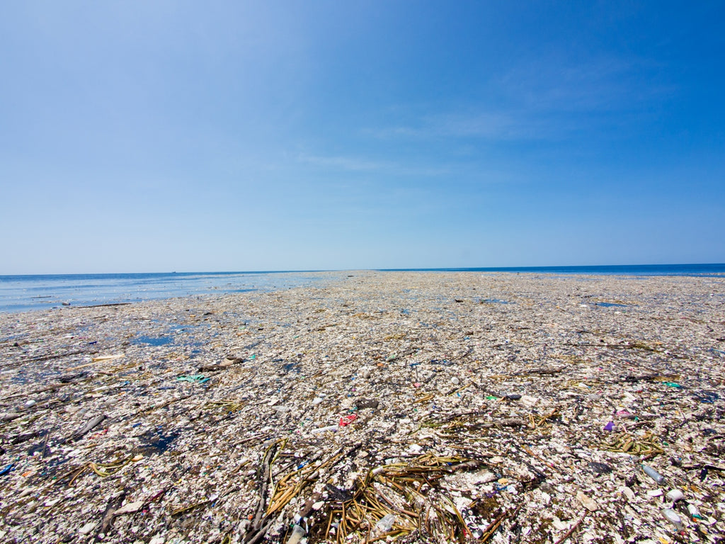 Plastic Pollution: The Unseen Effects On Our Oceans