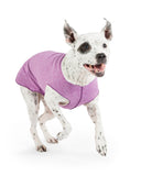 Sun Shield Dog Tee - Violet