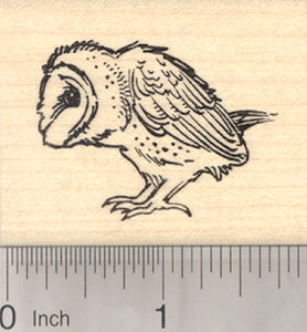 Barn Owl Rubber Stamp, Bird Profile View