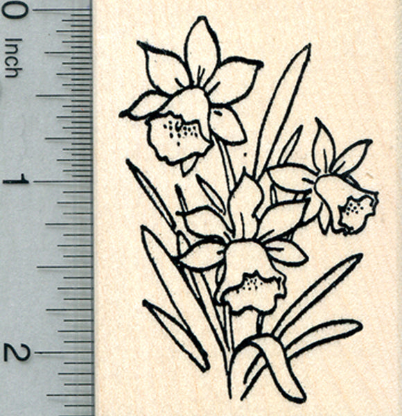 Daffodil Flower Rubber Stamp, Summer Floral Series
