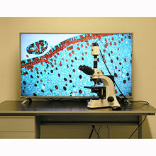 40X-2500X Plan Infinity Laboratory Trinocular Compound Microscope & 1920x1080 HDMI Camera