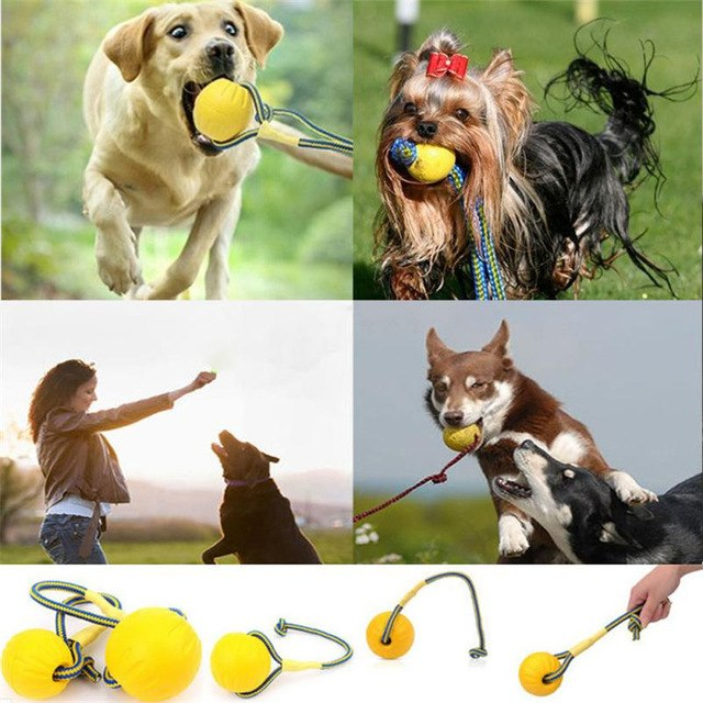 Dog Training Toy Ball Indestructible -  Sport Pet Shop