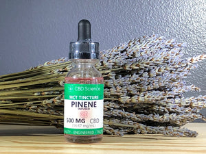 CBD Tincture Terpene Infused : Pinene