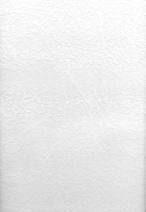 Willie Paintable Texture Wallpaper-white textured wallpaper