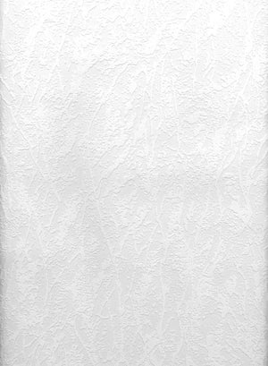 Freese Paintable Plaster Texture Wallpaper-a plaster design, this all over textured wallpaper is done in white