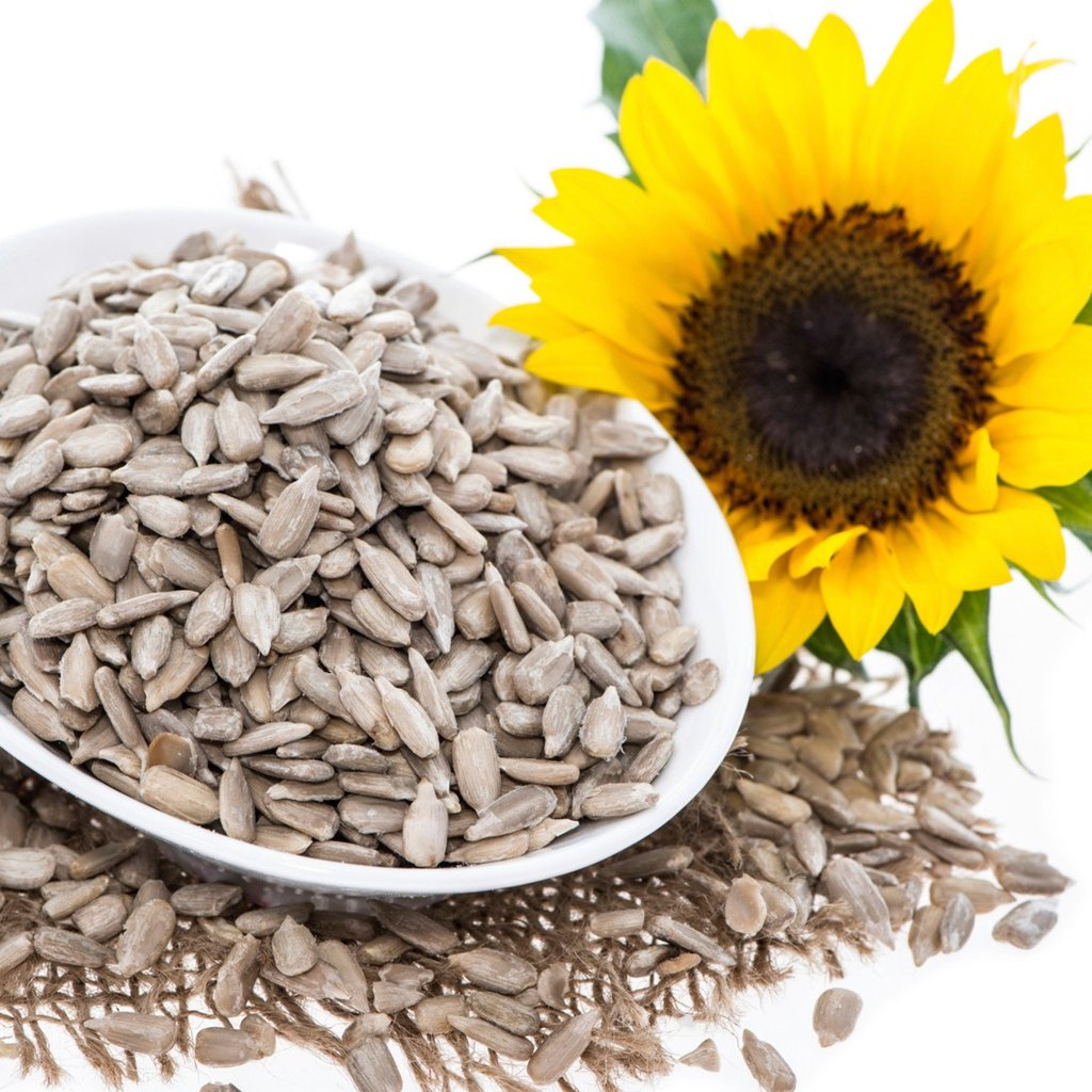 Sunflower Seeds - Organic, Raw, Sprouted