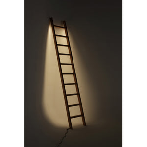 Cherry Ladder LED Line Light