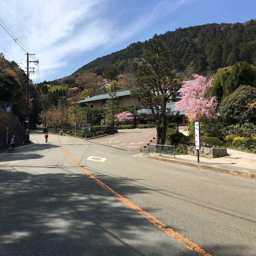 The road coming to Katsuoji temple on the Minoh cycling route.