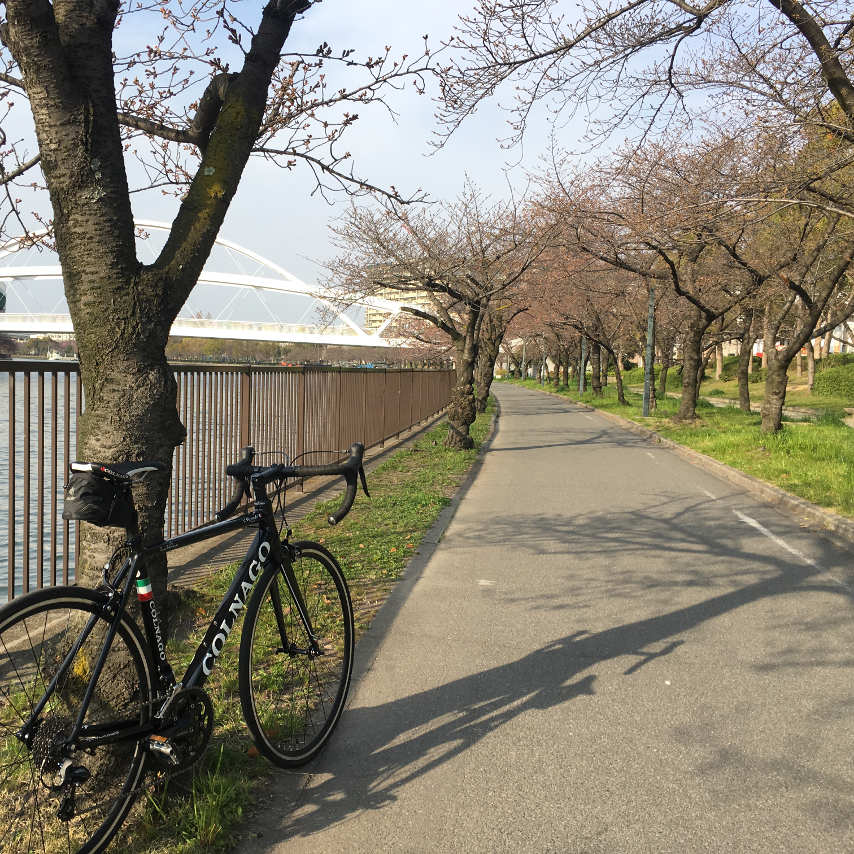 The cycle path along the Oo river in Osaka.
