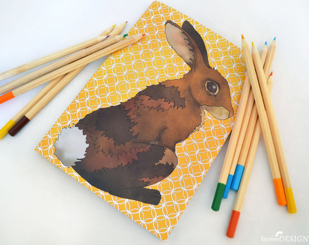 Animal Notebooks (Various Designs Available)