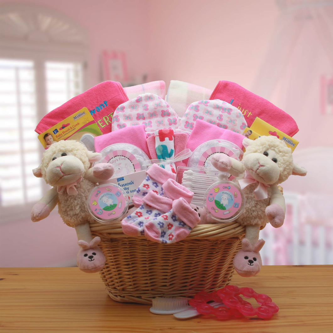 Double Delight Twins New Babies Gift Basket - Pink