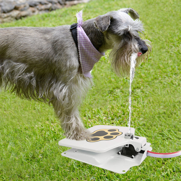 Drinking Pet Activated Water Fountain