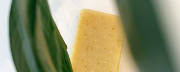 Elixir G Ginger Soap