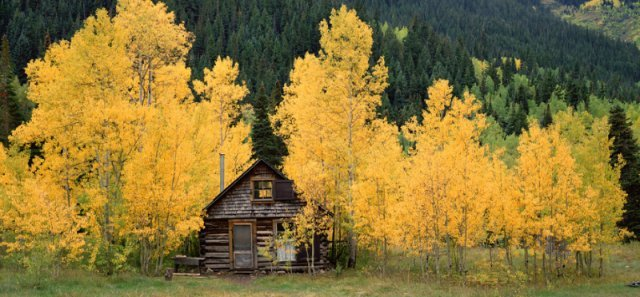"""Old Miner's Cabin, Crystal, Colorado"" by David Clack"