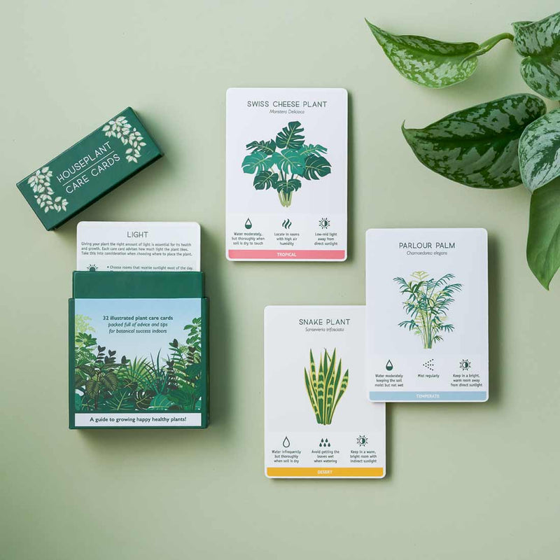 House plant care cards