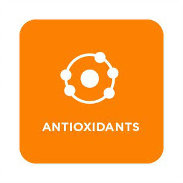 Importance Of Antioxidants