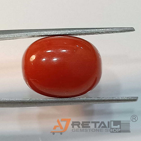14.63ct Natural Red Coral Certified by IGL