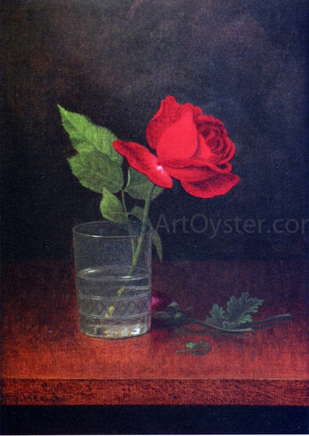 Martin Johnson Heade A Single Rose in a Glass - Hand Painted Oil Painting