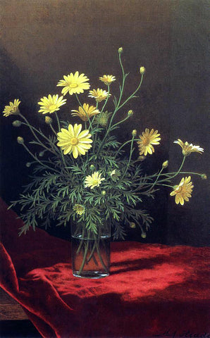 Martin Johnson Heade Golden Marguerites - Hand Painted Oil Painting