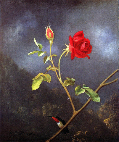 Martin Johnson Heade Red Rose with Ruby Throat - Hand Painted Oil Painting