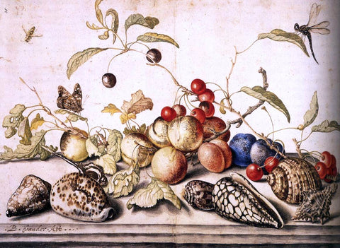 Balthasar Van der Ast Still-Life with Plums, Cherries, and Shells - Hand Painted Oil Painting