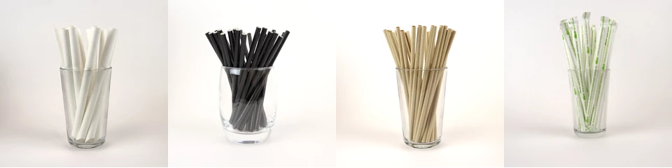 blowholes biodegradable paper straws