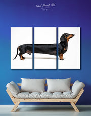 3 Piece Long Dachshund Wall Art Canvas Print