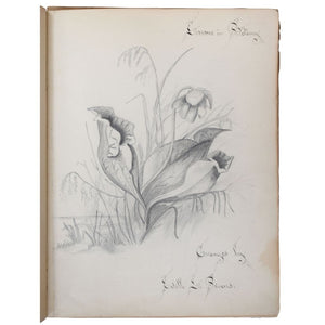 Lessons in Botany. [Manuscript Notebook].