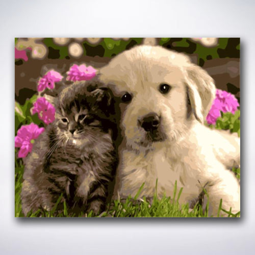 Cat And Dog Best Friends - Paint by number
