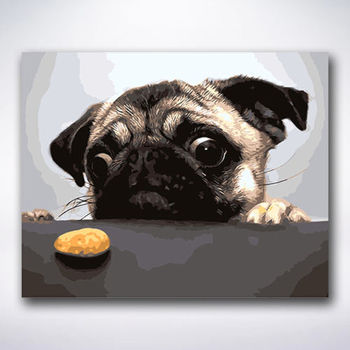 Hungry French Bulldog - Paint by number